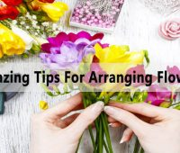 Amazing Flower Arranging Tips from an Expert