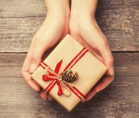 Hands holding gift box with pine cone